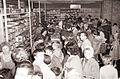 Gneča v Mariborski knjigarni pred začetkom pouka 1960 (2).jpg