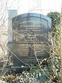 Goldziher Ignác-Goldziher Károly sírja.jpg