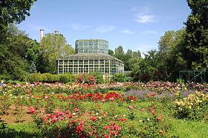Bucharest Botanical Garden - Image: Gradina Botanica iunie 2014 IMG 3798 01