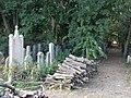 Graves and woodpiles, Jewish Cemetery, 2018 Józsefváros.jpg