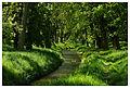 Green (18833529012).jpg