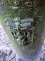 Grenspalen-wapen van Drenthe-1.JPG