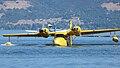 Grumman G-44 Widgeon (6193462428).jpg