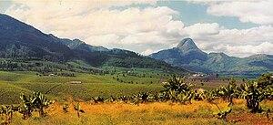 "Gurúè - In the background: Mount Murresse; near the center, to the right: ""Plantações Manuel Saraiva Junqueiro"" - tea factory."