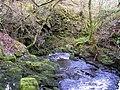 Gushing water - geograph.org.uk - 1176773.jpg