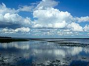 Lago di Newnans
