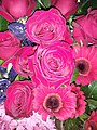 HKCL 香港中央圖書館 CWB 展覽 exhibition flowers February 2019 SSG 09.jpg