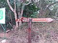 HK 西貢 Sai Kung District hiking Ma On Shan Country Park Ma Nam Wat Tui Min Hoi February 2021 SSG 12.jpg