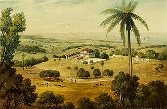 Saint Ann's Bay, Jamaica - Cardiff Hall (1825)