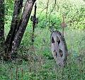 Harju-Madise vana kalmistu, 4.JPG
