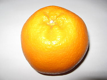 https://upload.wikimedia.org/wikipedia/commons/thumb/b/b4/Harumi_orange.jpg/375px-Harumi_orange.jpg