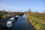 Hedging MMB 04 Bridgwater and Taunton Canal.jpg