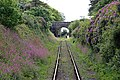 Helston Railway - approaching Trevarno Bridge and Station (geograph 5416392).jpg