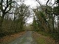 Heol y Wig-Forest Road - geograph.org.uk - 655974.jpg