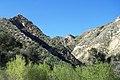 Hiking Towsley Canyon (2323999415).jpg