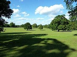 Hillingdon Court Park - Aimee Atkinson.jpg