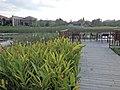 Hilton garden - panoramio.jpg