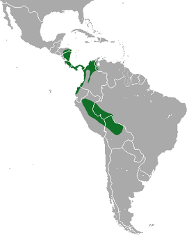 Hoffmann's two-toed sloth range