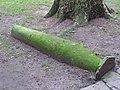 Hogback gravestone in the churchyard of St. Bartholomew the Great - geograph.org.uk - 1124780.jpg
