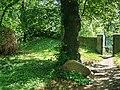 Hohenwussen Kirchhof Lutherlinde Gedenkstein.jpg