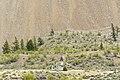 Holy Place - panoramio (3).jpg