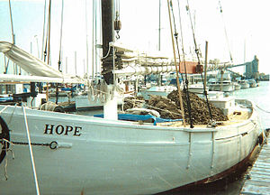 Hope With Oyster Shell.jpg