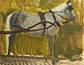 Horse in Harness.jpg
