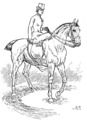 Horsemanship for Women 067.png