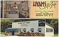 Hyams Gift Shop, tourist information, Bryson City, N. C. (5756042132).jpg