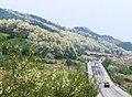 IM000563 - panoramio.jpg