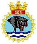 INAS 303 insignia.jpg