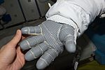 ISS-48 EVA (c) space gloves checking.jpg