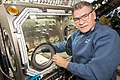 ISS-53 Paolo Nespoli works inside the Destiny lab.jpg