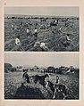 Illustrated historical atlas of Traill and Steele counties, North Dakota LOC 2006628626-25.jpg
