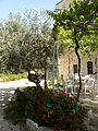 In the Garden of JUC (3671947402).jpg