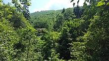 Calea ferată forestieră Covasna–Comandău - Wikipedia