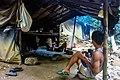 Indonesia - Bukit Lawang (26552995235).jpg