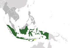 Indonesia map of Timor.png