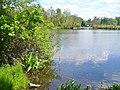 Insel Toeplitz - Bucht (Toeplitz Island - Bay) - geo.hlipp.de - 36876.jpg