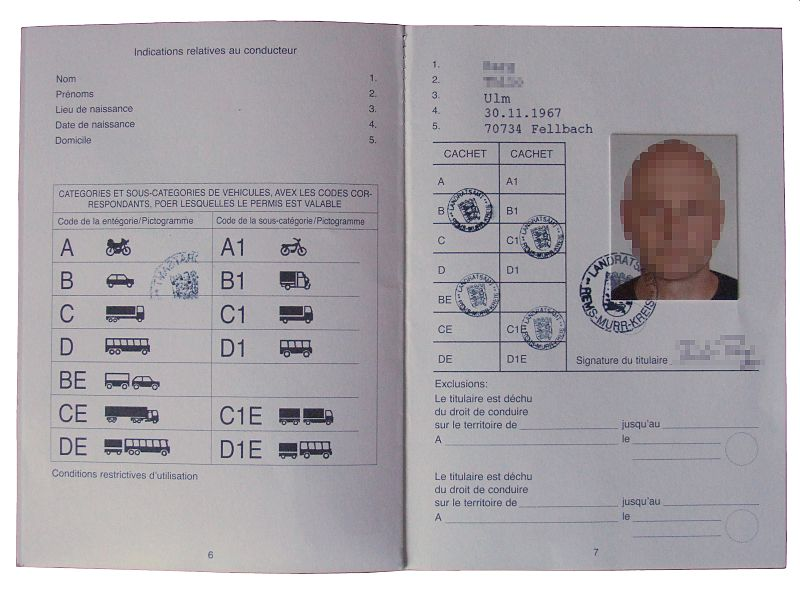 New Florida Drivers License Design