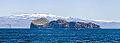 Isla Elliðaey, Islas Vestman, Suðurland, Islandia, 2014-08-17, DD 079.JPG