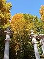 Jardín del Príncipe - panoramio (22).jpg