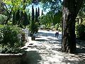 Jardin des plantes de Montpellier.jpg