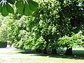 Jardin palais ducal parme 4.JPG