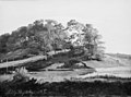 Johan Thomas Lundbye - Wooded Hills at Sørupvang - KMS6928 - Statens Museum for Kunst.jpg