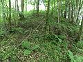 Judge's Hill, Lodge Wood, Loudoun, Galston.JPG