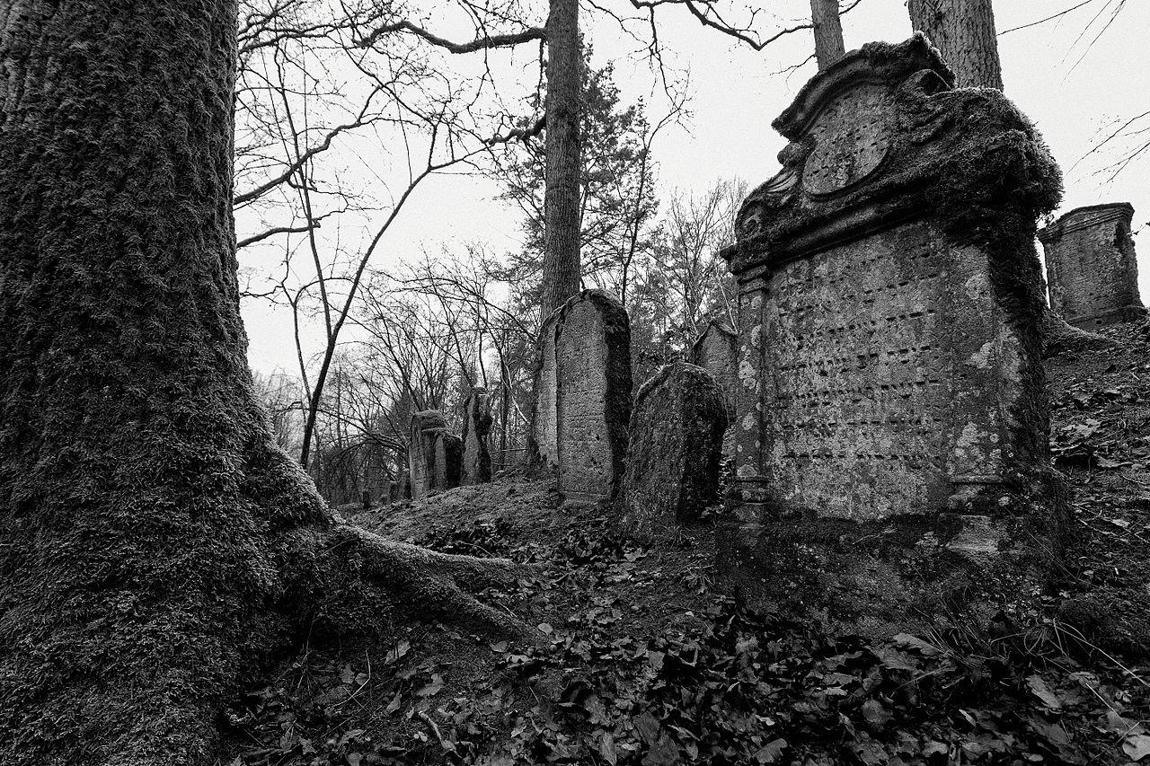 Juedischer friedhof sulzbachrosenberg-27exposurebw2.jpg