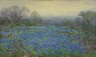 Untitled (Field of Bluebonnets)