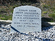 Just Nuisance's Grave (1)