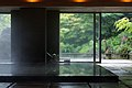 Kai Tsugaru Owani Onsen Aomori pref Japan01s5.jpg